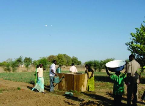 Elèves du CPA de Bougoudang arrosant les poireaux avec l'eau d'un forage